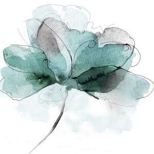 Monee OLEJOMAĽBA, kvety, 85/85 cm