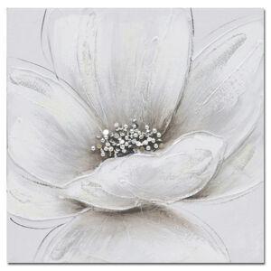 Monee OLEJOMAĽBA, kvety, 30/30 cm
