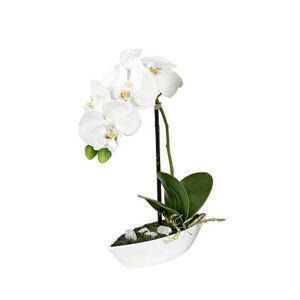ORCHIDEA orchidea 28 cm